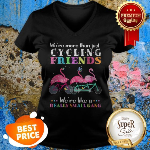 Nice Flamingos We're More Than Just Cycling Friends Really Small Gang V-neck